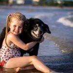 Разкриха защо кучетата са дружелюбни