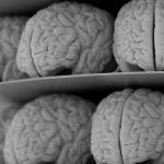 Нови разкрития за загубата на памет