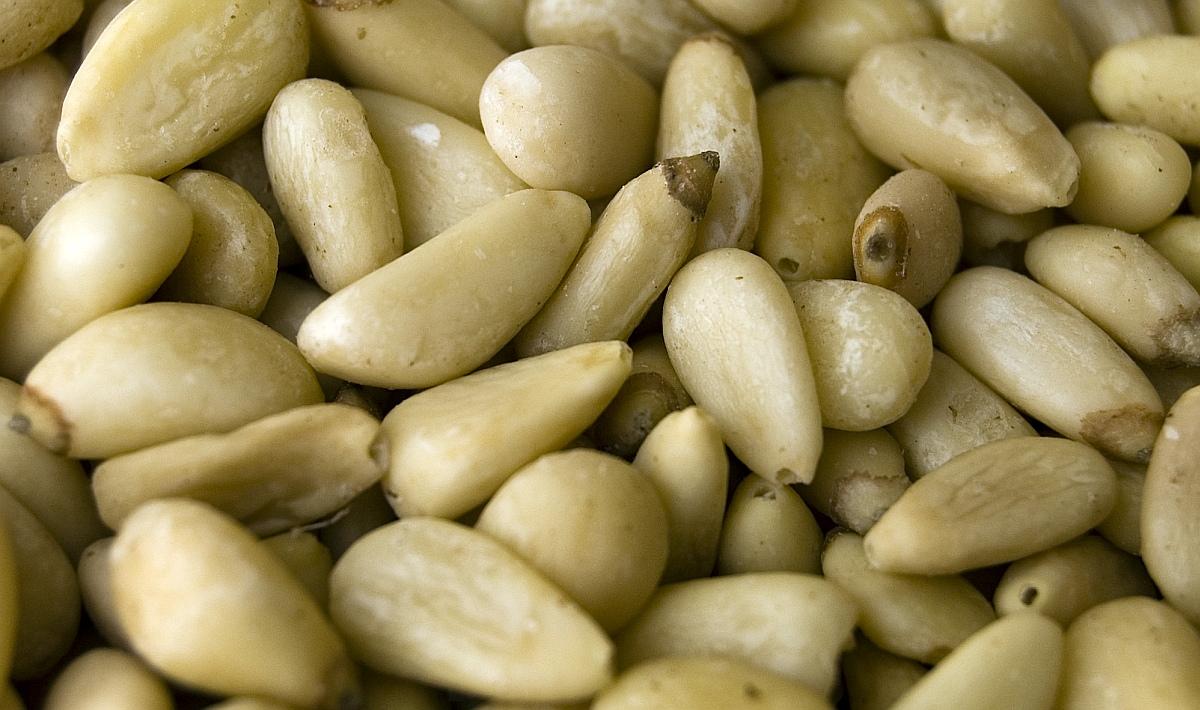 борови семки