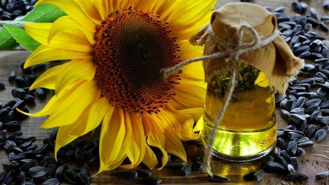 слънчоглед и олио