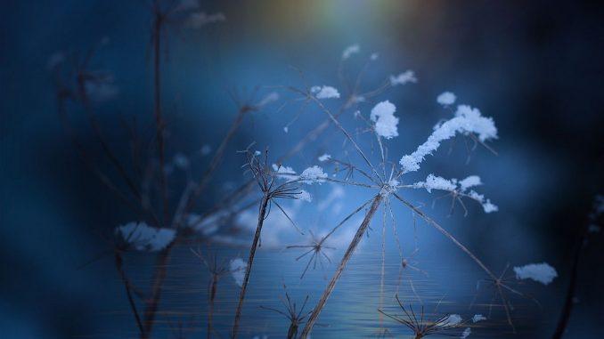 суха зима