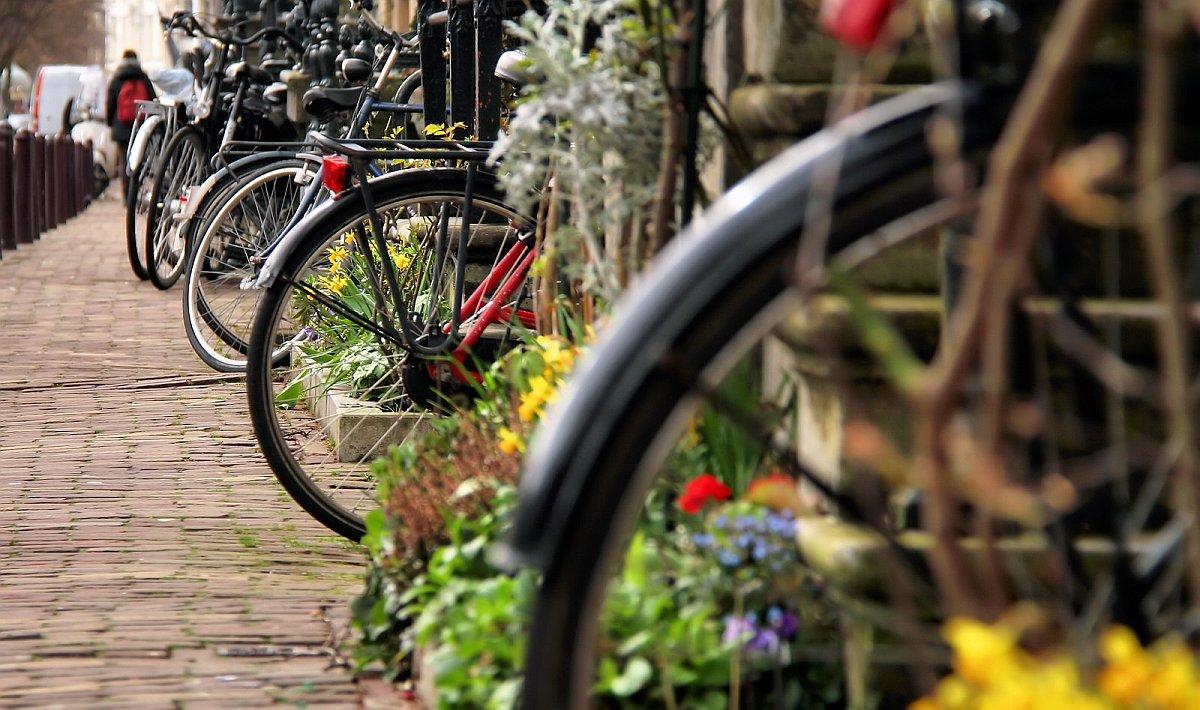 колела в Амстердам