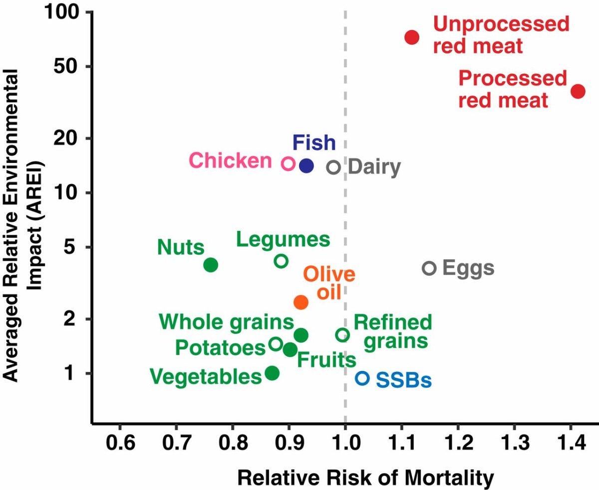храни и смъртност